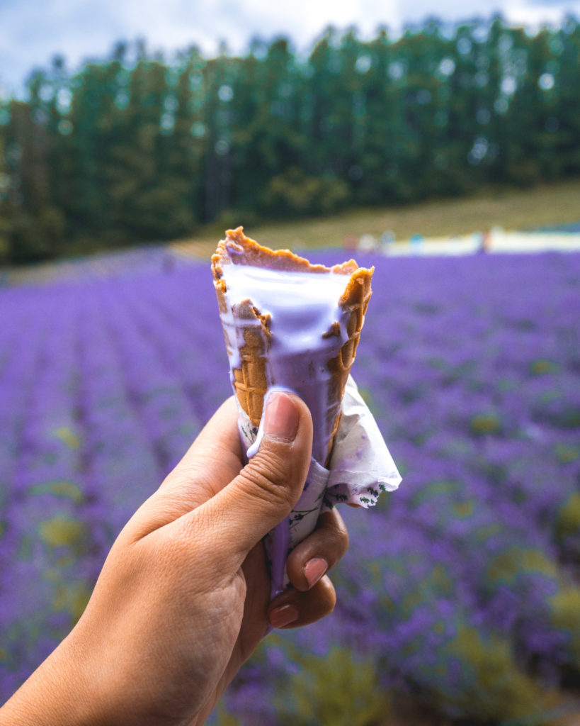 Lavender Soft Serve